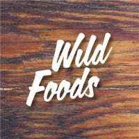 Barritas de cereales y proteína - Wild Foods
