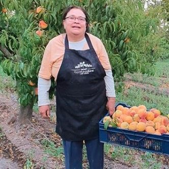 Frutas - Bernardita Bustamante